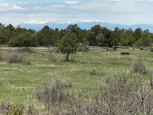 TBD County Road 44Z S, Norwood, CO 81423