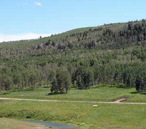 3B Spruce Mountain Lane Ridgway CO 81432
