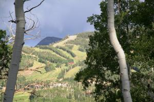 Lot 628H Double Eagle Way, Mountain Village, CO 81435