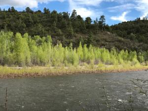 18738 Hwy 145, Dolores, CO 81323