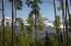 110 Palmyra, Mountain Village, CO 81435