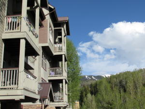 327 Adams Ranch Road Unit: 202, Mountain Village, CO 81435