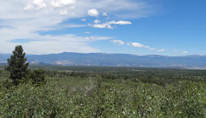 TBD Spruce Mountain Lane, Ridgway, CO 81432