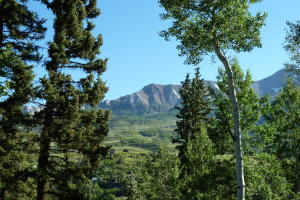 Lot 314-13 Society Drive, Telluride, CO 81435