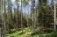15 High Noon Lane, Telluride, CO 81435