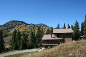 166 Gray Jay Place, Telluride, CO 81435