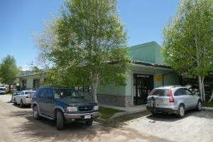 100 Campbell Lane, Ridgway, CO 81432