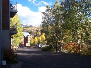 319 Adams Ranch Road Unit: 1001, Mountain Village, CO 81435