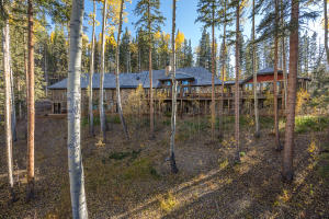 187 San Joaquin Road, Mountain Village, CO 81435