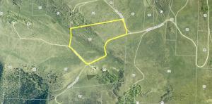 Lot 13 Old Elam Ranch Placerville CO 81430