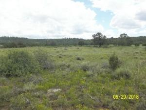 Property for sale at tbd County Rd V44 E, Norwood,  Colorado 81423