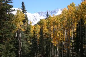 Property for sale at Lot 3 Cortina Drive, Mountain Village,  Colorado 81435