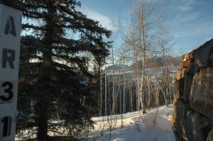 127 Singletree, Mountain Village, CO 81435