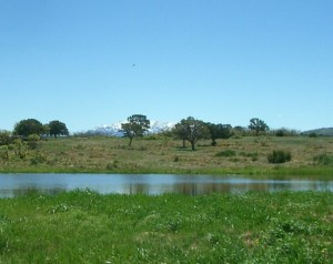 tbd V44 & Young Way Road, Norwood, CO 81423