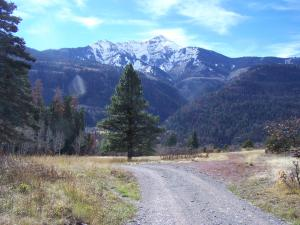 TBD CR 14 Road, Ouray, CO 81427