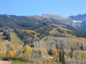 TBD Country Club Drive Mountain Village CO 81435