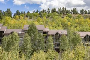 327 Adams Ranch Road, Mountain Village, CO 81435