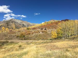 TBD Last Dollar Road, Telluride, CO 81435