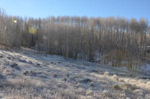 Lot 50 Sunset Circle, Telluride, CO 81435