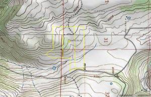 TBD 56V Road Placerville CO 81430