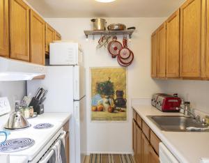 503 W Colorado Avenue Telluride CO 81435