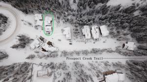 103 Cabins Lane, Mountain Village, CO 81435