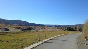 TBD Lot 11 Palomino Trail Ridgway CO 81432