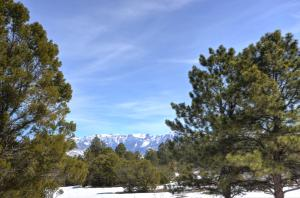Property for sale at 23 Cougar Trail, Ridgway,  CO 81432