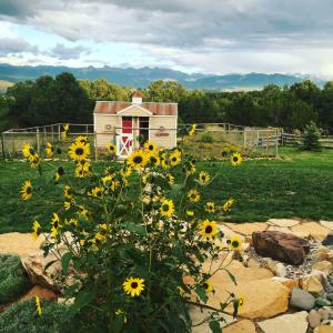 2300 County Road Montrose CO 81401