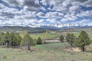 TBD County Road 24 Ridgway CO 81432