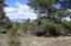 1233 Marmot Drive, Ridgway, CO 81432