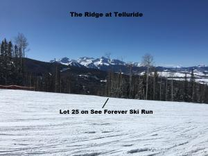 25 LA SAL Lane Mountain Village CO 81435