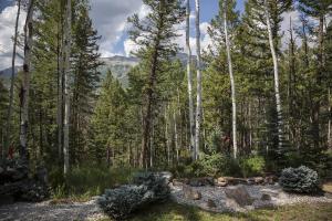 261 Adams Ranch Road Mountain Village CO 81435