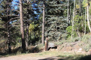 Tract 7 Sky Mountain Ranch Placerville CO 81430