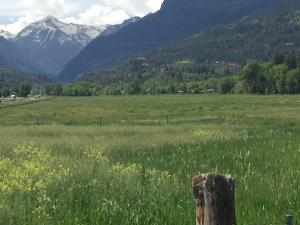 Property for sale at 17505(TBD) Highway 550, Ridgway,  Colorado 81432