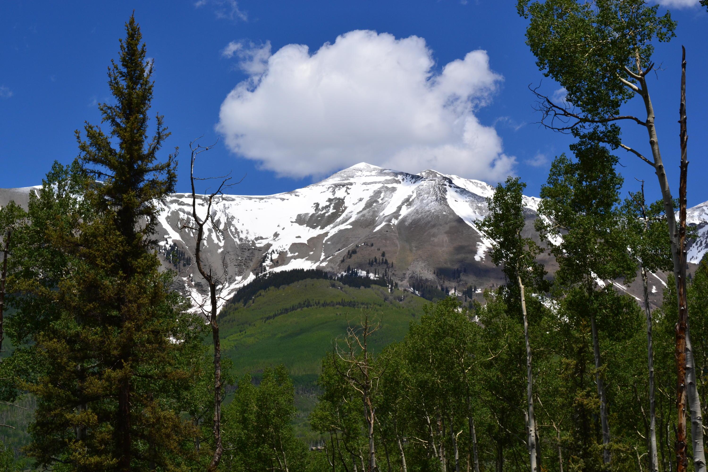 127 Adams Way Mountain Village CO 81435