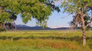 Property for sale at 40485 Hwy 145, Norwood,  Colorado 81423