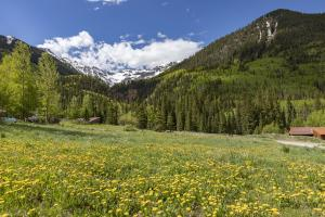 Property for sale at TBD Porphyry Street, Ophir,  Colorado 81426