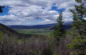 Property for sale at Lot 16 Timber Road, Ridgway,  Colorado 81432