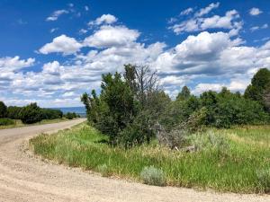 tbd Thunder Road & Catspaw Way Norwood CO 81423