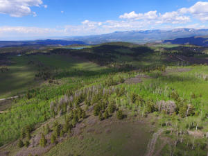 Property for sale at TBD County Road 5, Ridgway,  Colorado 81432