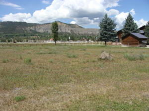 TBD Palomino Trail Ridgway CO 81432