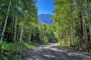 Property for sale at 213 Mill Road, Rico,  Colorado 81332