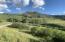 TBD San Juan Vista Road, Placerville, CO 81430