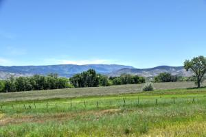 TBD 6900 Road Montrose CO 81401