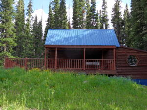 3340 HOPE LAKE Road Ophir CO 81426