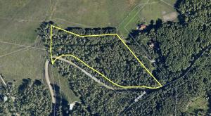 TBD Tract 25 Wilson Mesa Ranch Placerville CO 81430
