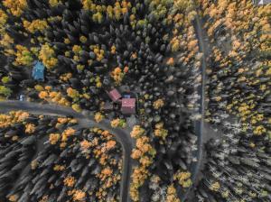 815 Saddle Horn Lane Telluride CO 81435