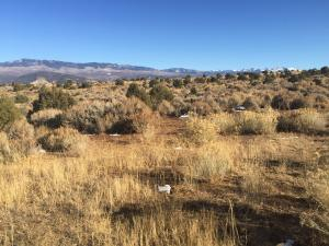 Lot 2 Mountain Vista Court Montrose CO 81403