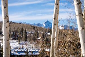 115 Aspen Ridge Drive Mountain Village CO 81435